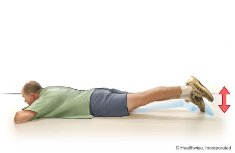 Straight-leg raises to the back (lying on the belly)